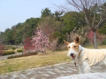 2008_03_12_jan.jpg