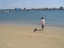 2008_03_27_beachv.jpg