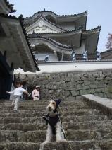 2008_04_12_castle.jpg