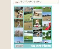 2008_04_16_photo2.jpg