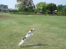 2008_04_27_jump.jpg