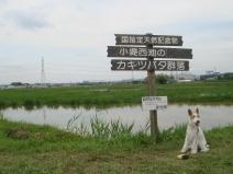 2008_05_14_kanaban.jpg