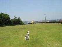 2008_06_13_up.jpg