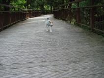 2008_08_01_come.jpg