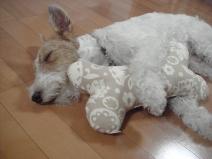 2008_08_05_sleep.jpg