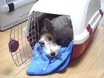 2008_09_07_sleep.jpg