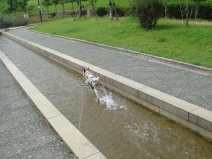2008_09_17_run4.jpg