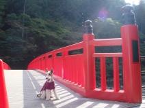 2008_10_30_red.jpg