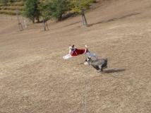 2008_12_24_fly.jpg