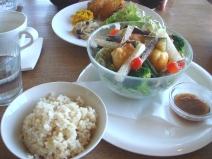 2009_02_07_lunch.jpg