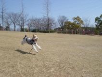 2009_03_12_happy.jpg