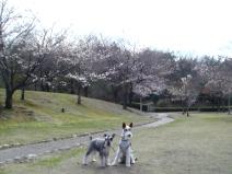 2009_03_25_two.jpg