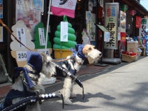 2009_04_12_bankoen.jpg