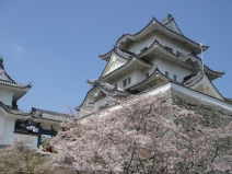 2009_04_12_castle.jpg