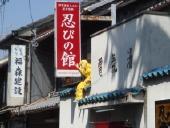 2009_04_12_yellow.jpg