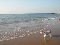 2009_04_24_beach.jpg
