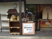 2009_04_26_ice.jpg