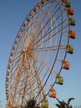 2008_09_22_wheel.jpg