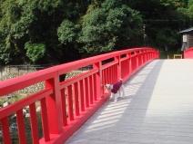 2008_10_30_red2.jpg