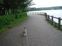 2009_05_08_joy.jpg